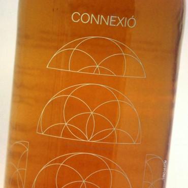 Cosmic Connexió Còsmica 2019